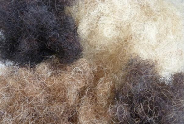 Конский волос фото