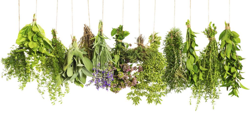 травы для подушек