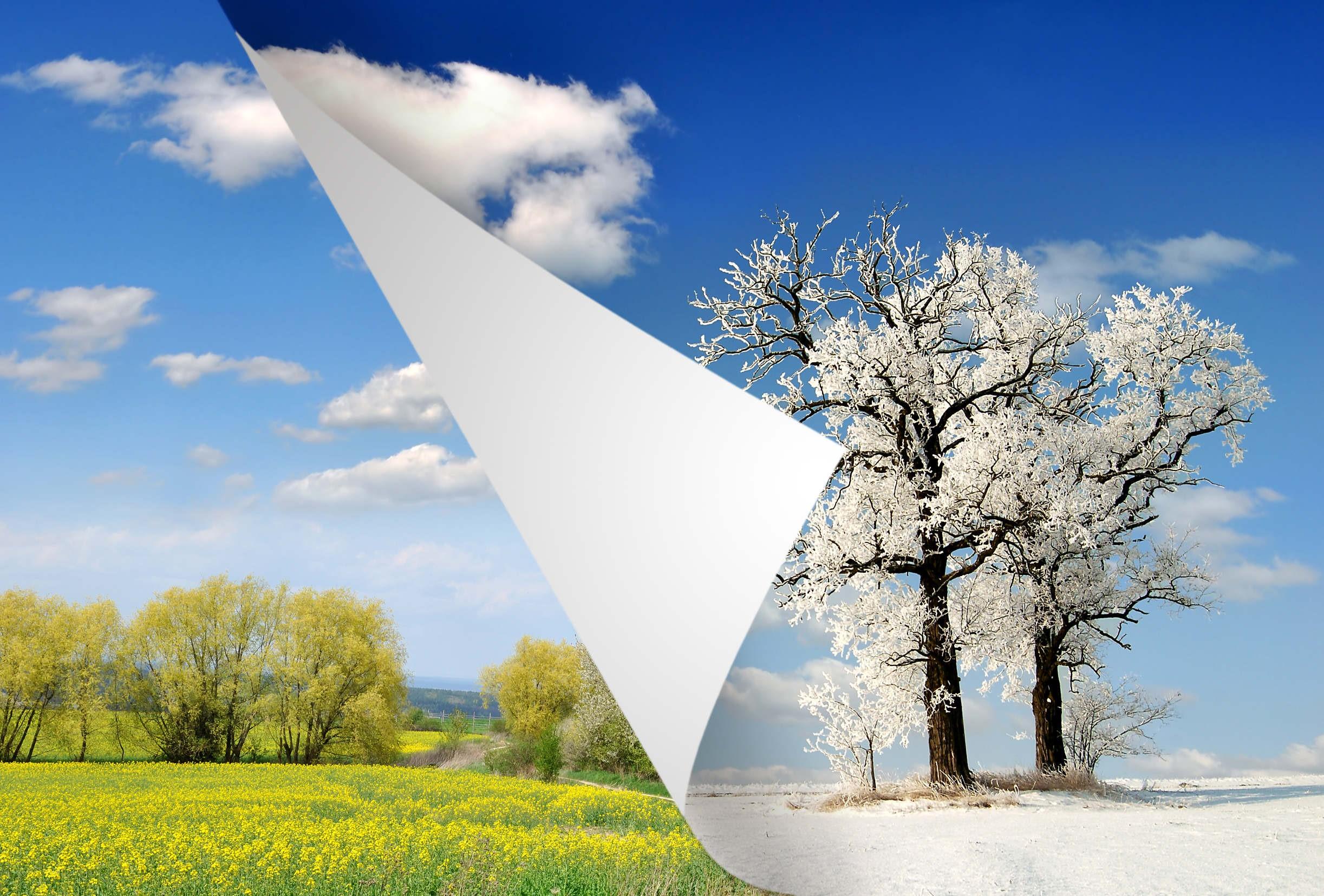 зима и лето в одной картинке