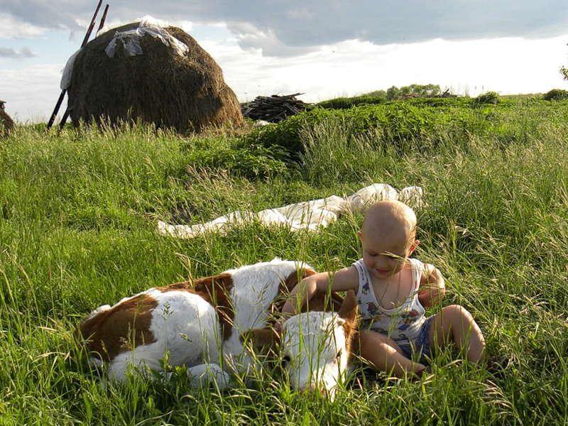 Фото детей в деревне летом
