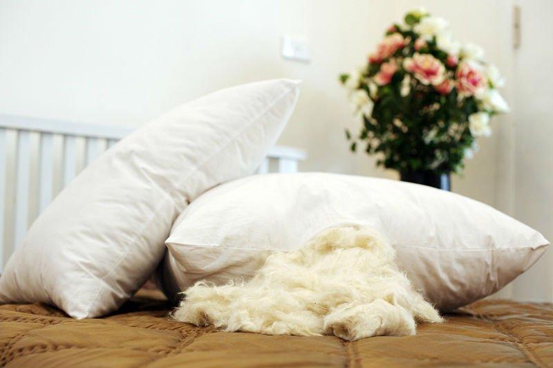 Наполнитель капок для подушек